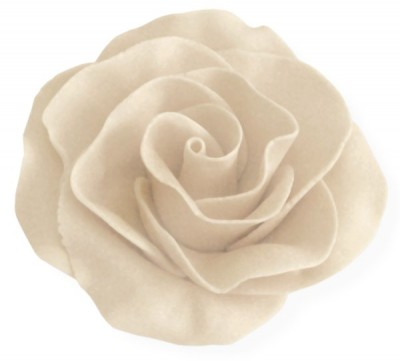 trandafir martipan kate